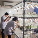생물학 공업 세탁