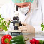 식물업 공업 세탁